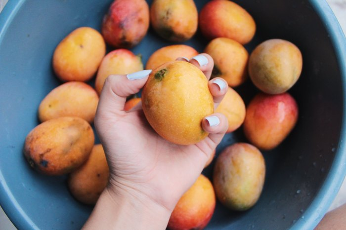 What Mangoes Teach You About Life